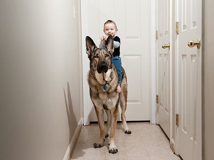 cute-big-dogs-and-babies-14