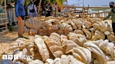 >Philippines: Giant clam shells worth $25m seized in raid