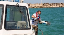 >Italy's seas speak: No tourists or boats mean cleaner water